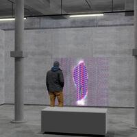 Art+Science – Lenticular Installation